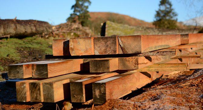 Mobile Sawmilling